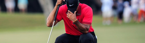 Tiger's Struggles